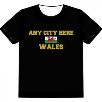 Souvenir T-Shirt (WALES)